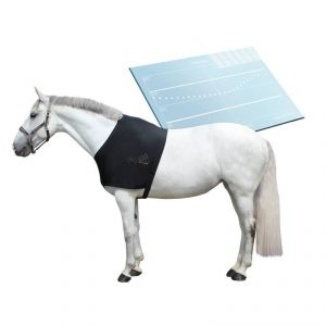 capteur cheval Fouganza