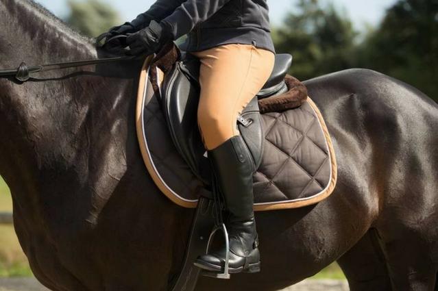 Pourquoi mon cheval a mal au dos