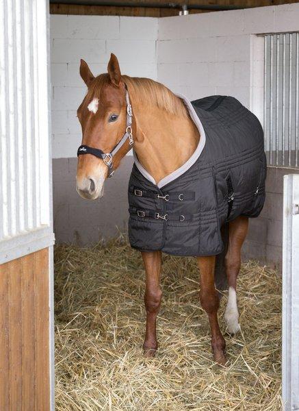 couverture après la tonte du cheval