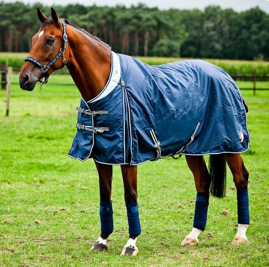 quelle couverture pour mon cheval