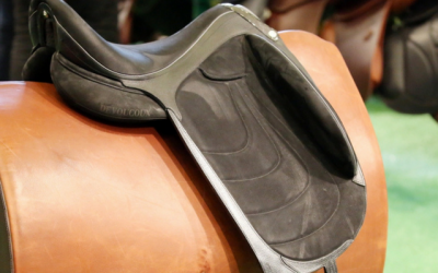 Zoom sur Makila Harmonie, LA selle de dressage Decouvoux