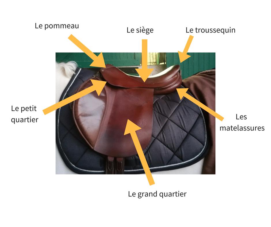 partie selle équitation