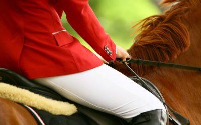 Mon cheval s'encapuchonne : Quel mors peut m'aider ?