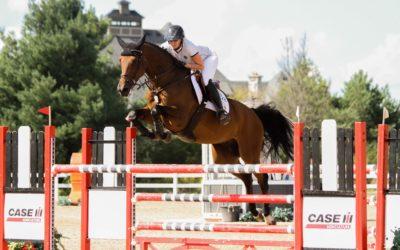 Protège-dos d'équitation : comment bien le choisir ?