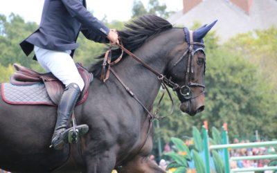 Qu'est-ce que le Saddle Fitting ?