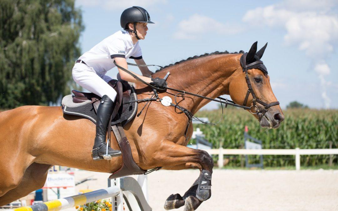 Casque d'équitation : Quand le changer ?