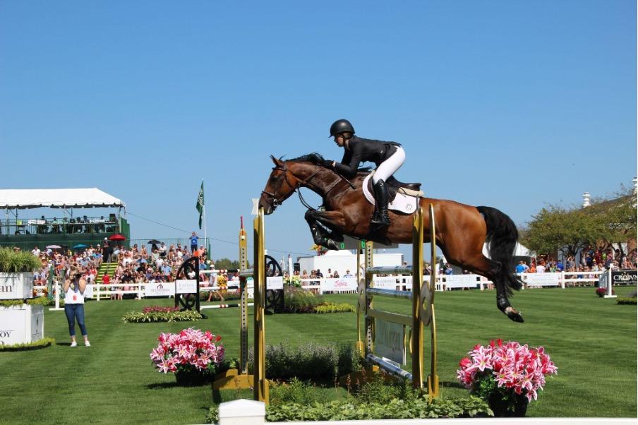 Quel équipement choisir pour commencer les concours d'équitation ?
